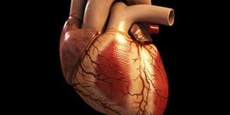 دل کی صحت کے بارے میں 7 چیزیں ایسی ہیں جن کہ آپ کو پتہ ہونا چاہیئے۔