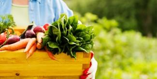 پتوں والی سبزی کھائیں ، چاق چوبند ہوجائیں