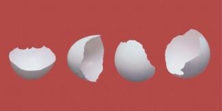 انڈے کے چھلکوں کے حیرت انگیز فوائد