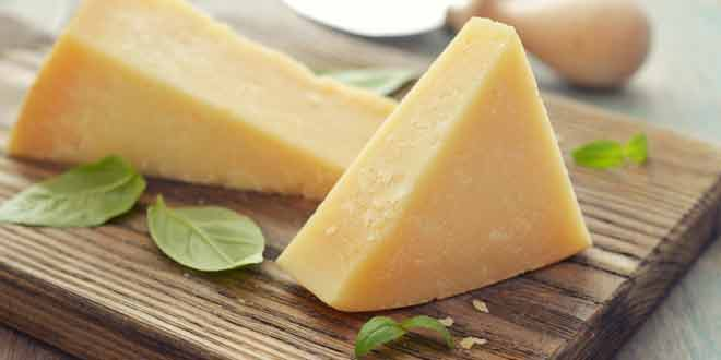 everything about cheese that you do not know