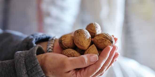 7 foods increase mental abilties