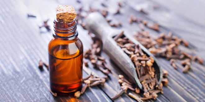9 health benefits of clove oil