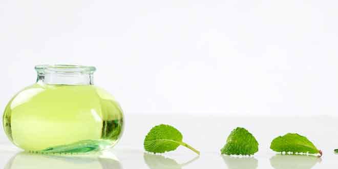 fragrances that revitalize your mind