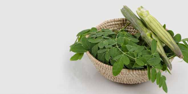 health benefit of Moringa (Sohanjna)
