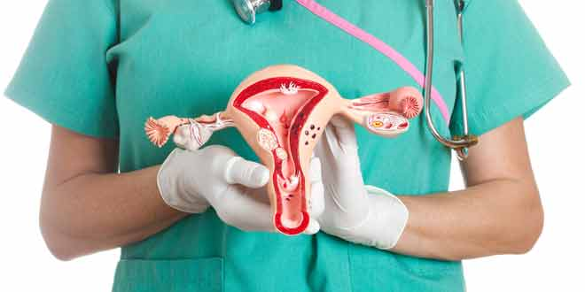 symptoms of fibroids in uterus