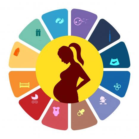 Pregnancy Problems in Urdu
