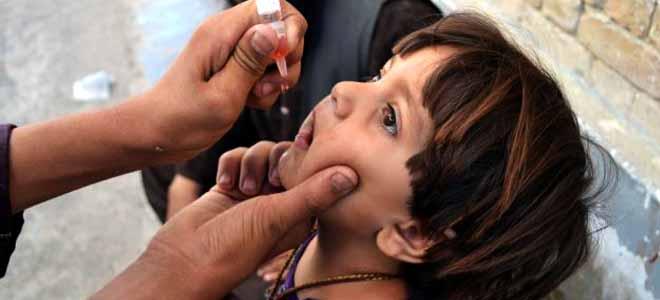 Polio update