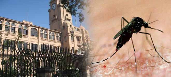 dengue-virus-claiming-lives