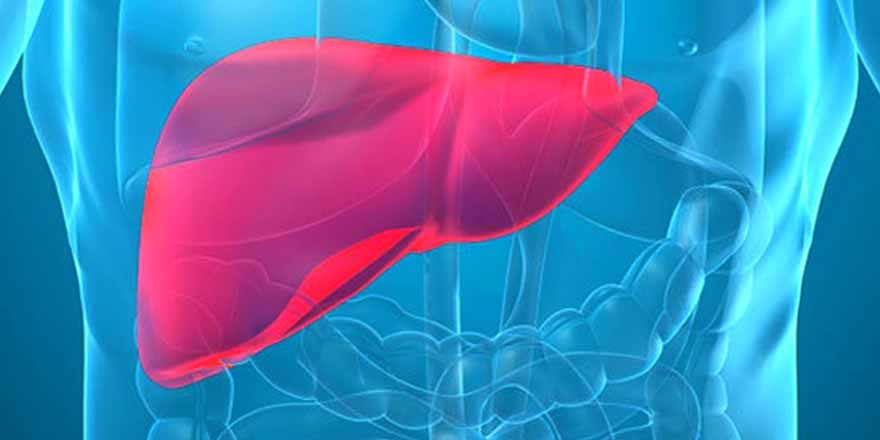 health-tips-for-a-clean-detoxified-liver