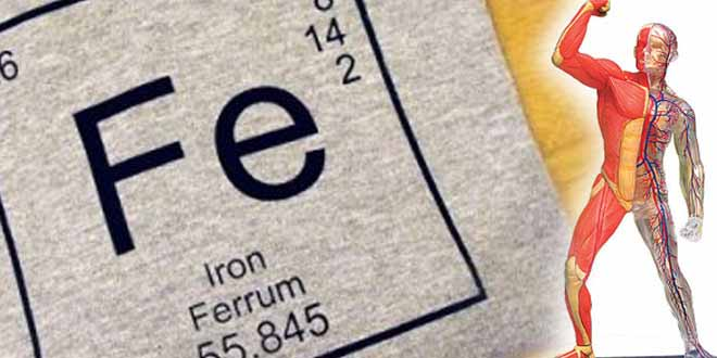 the-truth-about-iron