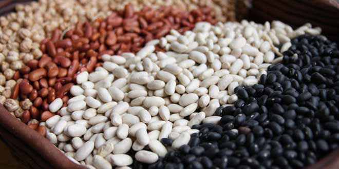 beans-a-superfood-you-need-to-start-eating