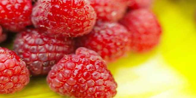 delicious red fruits