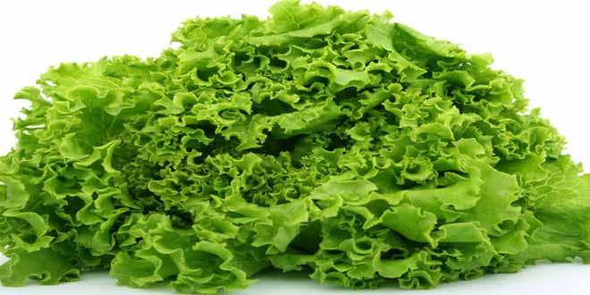 Fresh green vegetable over white
