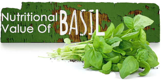 nutritional-facts-about-basil