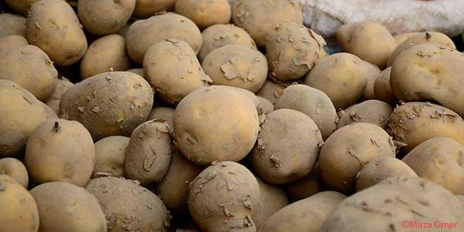 sweet-vs-regular-potatoes