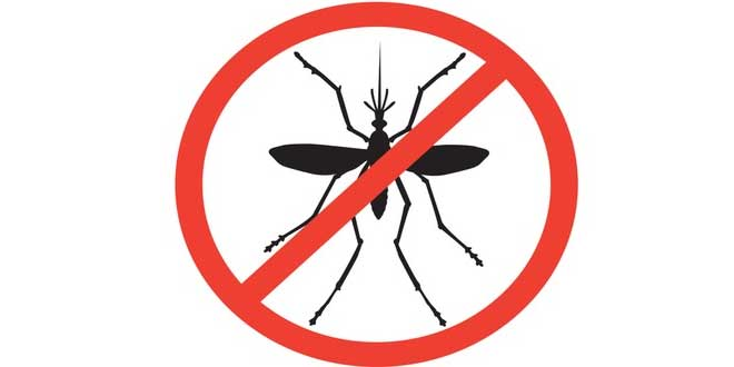 Anti-Dengue Day to be Observed on June 15th