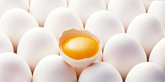 are-eggs-healthy-for-your