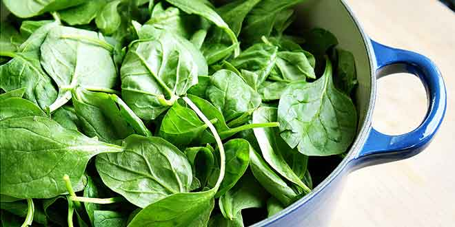Spinach to Cure Arthritis