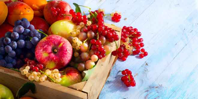 7 Foods to Eat for a Healthy Kidney and Bladder Function