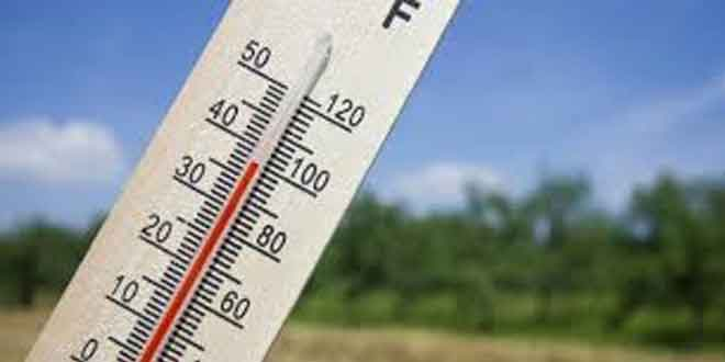 Heat and Humidity Take the Life of Over 1000