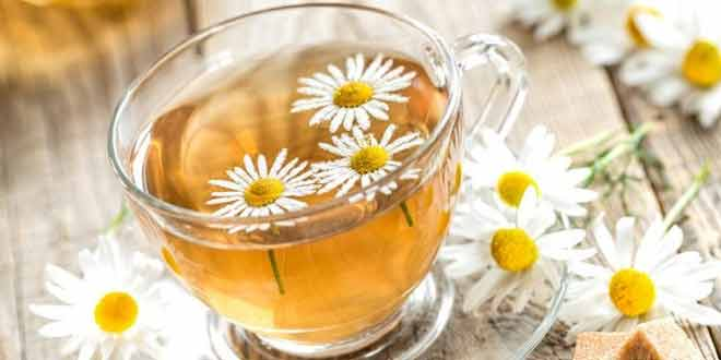 5 Amazing Things Chamomile Tea can Do to Your Body