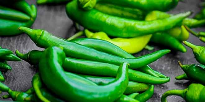 "Top-10-Benefits-of-""Green-Chilli"""
