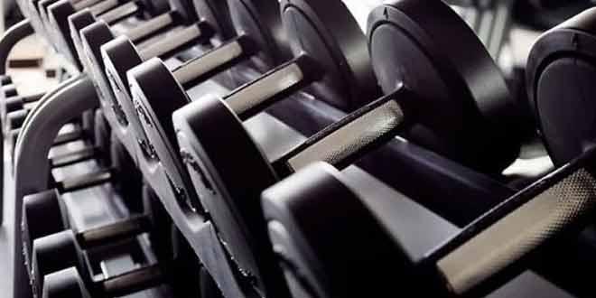Gym dilemma free weights vs machines htv