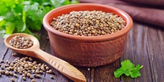 10 Amazing Health Benefits of Coriander You Need to Know!