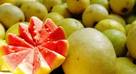 vein strengthening foods