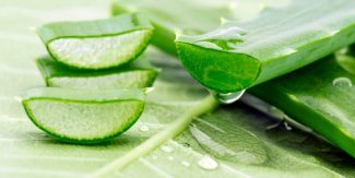 20 Wonderful Benefits Of Aloe Vera