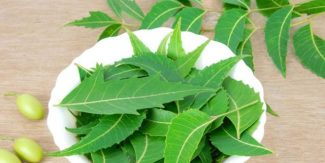 "10 Benefits of ""Neem"" You Should Know About!"