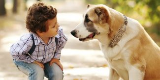 Benefits of a pet dog for families with autistic children