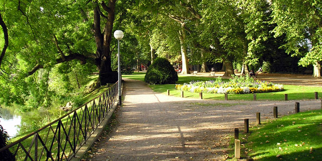Living-near-high-levels-of-greenery-may-reduce-aggressive-behavior-in-teens
