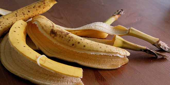 9 Reasons to Save Your Banana Peels