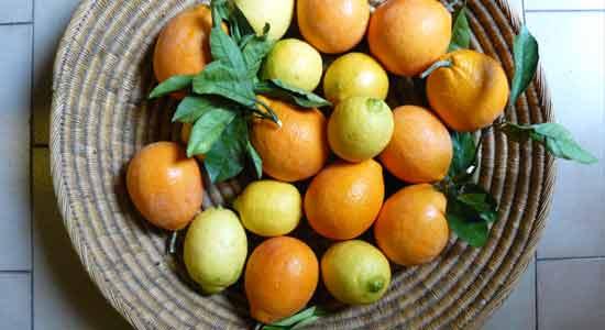 Citrus and Acidic Food