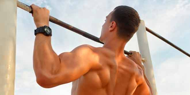 Plateau Breakthrough: The Reverse Biceps Workout