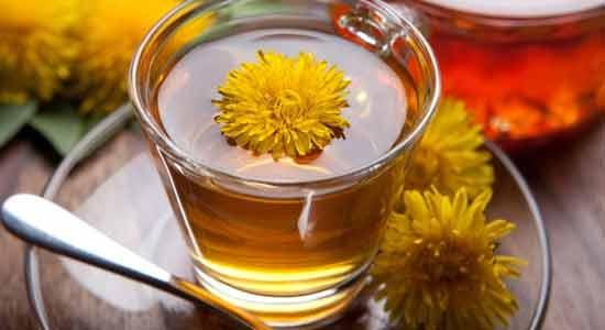 Dandelion to Lower Your Blood Pressure