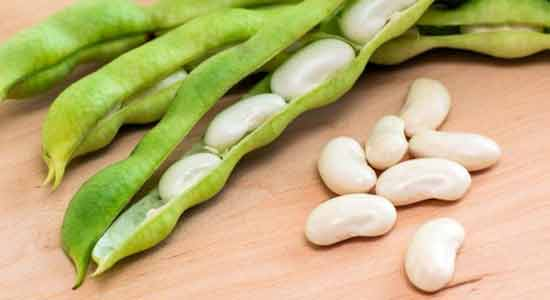 Lima Beans to Lower Your Blood Pressure