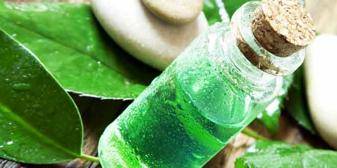 20 Amazing Benefits of Tea Tree Oil for Skin