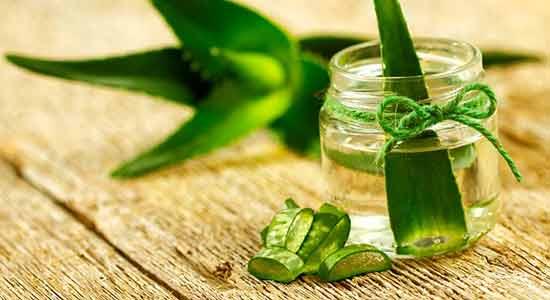 Aloe Vera Juice for Anti-Aging