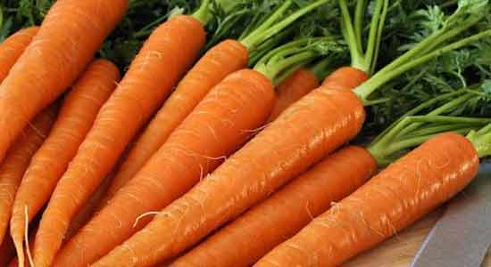 Carrots to Eat for Good Sperm Health