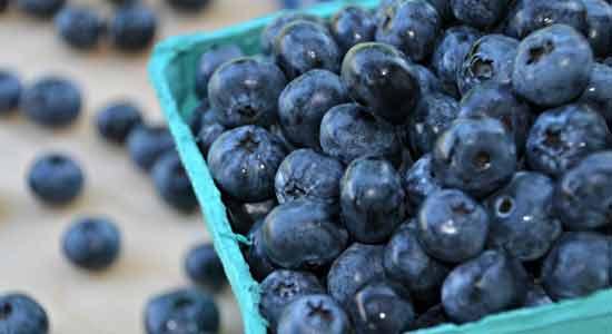 Blueberries Best Fertility Foods for Men