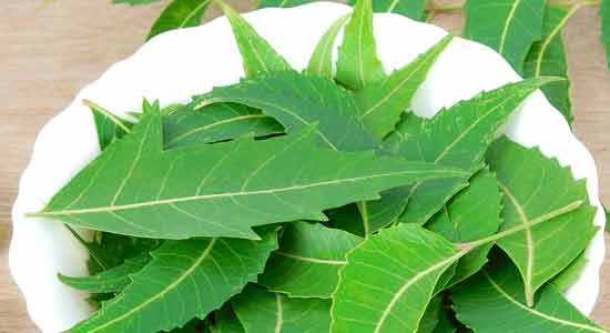 Neem Cure Itchy Armpits