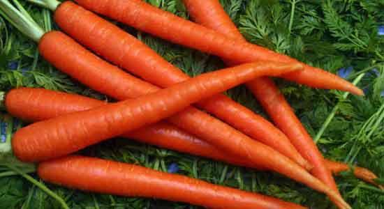 List Of Foods To Improve Eyesight