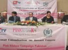 national-consultation-on-breast-cancer-03-09-2013-events-14