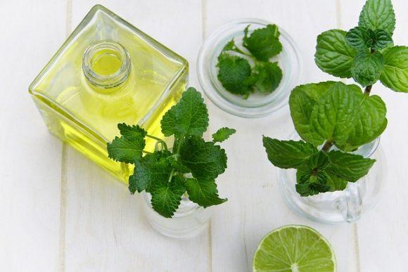 5 Herbal Remedies for Digestive Disorders2